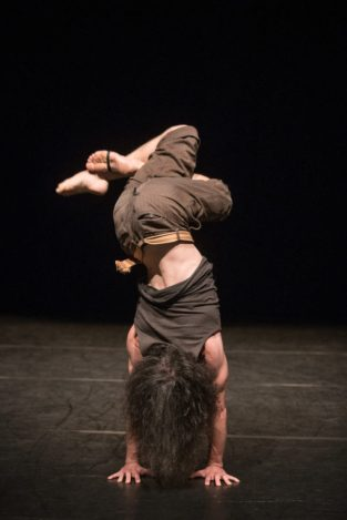 De Grote Belgische Dansvitrine. A Departure from Thought by Kurt Van der Elst